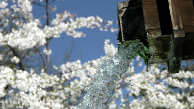 上高地の頃 山桜に色づく泡の湯