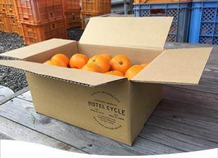 瀬戸内でとれた柑橘をご自宅へ直送!この時期だけしか予約出来ないお土産付プラン♪
