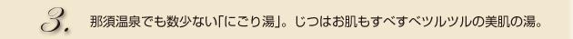 3.那須温泉でも数少ない「にごり湯」。じつはお肌もすべすべツルツルの美肌の湯。