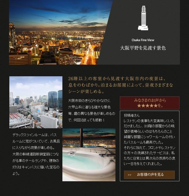 大阪平野を見渡す景色
