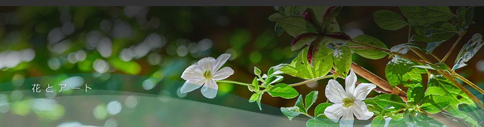 花とアート