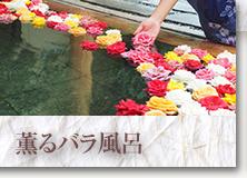 薫るバラ風呂
