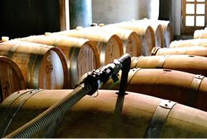 まるき葡萄酒のワイナリー