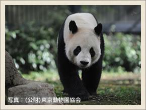 上野動物園(表門)
