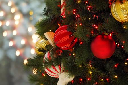 ロビーフロアにクリスマスツリーが登場!