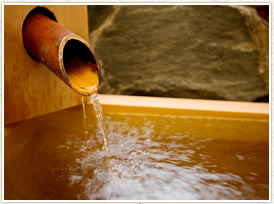 胃腸病特効泉の源泉