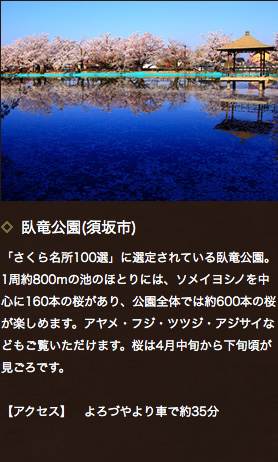 臥竜公園(須坂市)